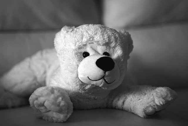 Teddy Bear Plush Stuffed Animal  - aKasakow / Pixabay
