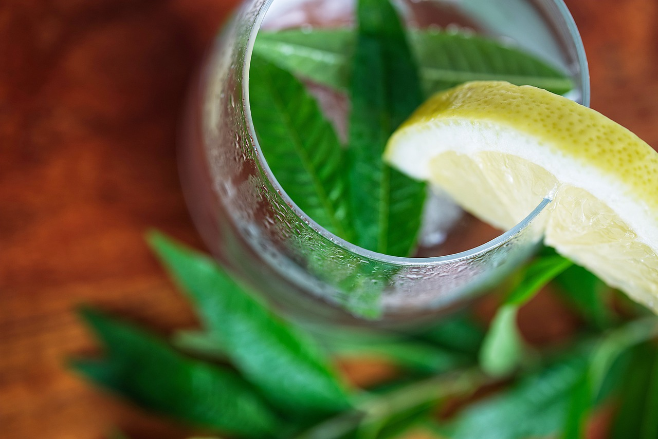 Lemonade Refreshment Lemon Summer  - KTRYNA / Pixabay